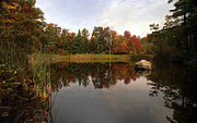 Fall Photos Prints - Fall Pond Print by Skip Willits