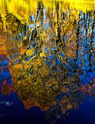 Nick Zelinsky - Fall Reflection Abstract