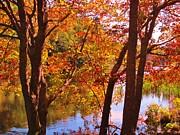John Malone - Fall River Nova Scotia