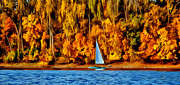 Park Scene Mixed Media Metal Prints - Fall Sailing  Metal Print by Todd and candice Dailey