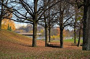 Park Benches Photo Originals - Fall scene at Olympic Park Munich by Imran Ahmed