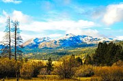 Fall Season In The Sierras Print by Don Bendickson