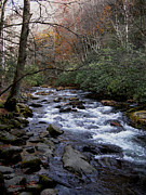 Rushing Water Prints - Fall Seclusion Print by Skip Willits