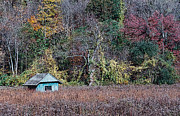 Shed Digital Art Metal Prints - Fall Shed #1 Metal Print by Glenn Cuddihy