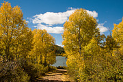 Geobob Metal Prints - Fall Splendor at Kolob Reservoir Markagunt Plateau Utah Metal Print by Robert Ford