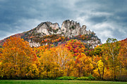 Mary Almond Prints - Fall Storm Seneca Rocks Print by Mary Almond