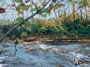 Little Harpeth River Paintings - Fall Stream by Sandra Harris