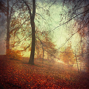 Herbstlaub Photos - Fall Tapestry by Dirk Wuestenhagen