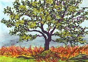 Fall Grass Drawings Posters - Fall tree Poster by Ranka Lazarevic