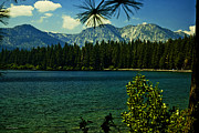 Fallen Leaf Photo Framed Prints - Fallen Leaf Lake Framed Print by Cheryl Young