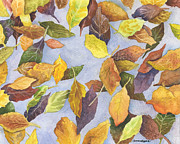 Fallen Leaf Painting Posters - Fallen Leaves Poster by Anne Gifford