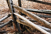 Old Fence Post Prints - Fallen Snow Print by John Rizzuto