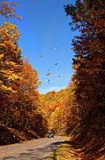 Falling Fall Leaves - Blue Ridge Parkway Print by Dan Carmichael