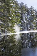 Karol  Livote - Falling Snow