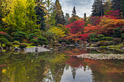 Japanese Garden Photos - Falls Brilliant Palette by Mike Reid