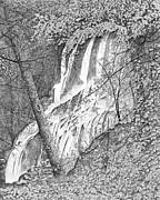 Carl Genovese - Falls