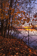 Fall Colors Autumn Colors Posters - Falls Morning Colors Poster by Mike Reid