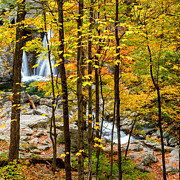 New England Autumn Art - Falls Thru The Forest Square by Bill  Wakeley