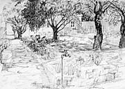 Fruit Trees Drawings - Family Garden by Mark Lunde