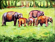 Maria Barry - Family of Elephants