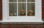 Teddybear Framed Prints - Family of teddy bears on the window. Framed Print by Kiril Stanchev