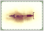 Geese Digital Art Prints - Family Outing Print by Bill Cannon