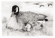 Mother Goose Drawings Originals - Family by Paul Treadway