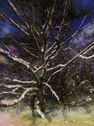 Claire Bull - Family Tree