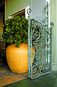 Places Acrylic Prints - Fancy Gate And Plain Pot by Ben and Raisa Gertsberg