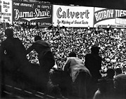 New York Stadiums Posters - Fans in the bleachers during a baseball game at Yankee Stadium Poster by Underwood Archives