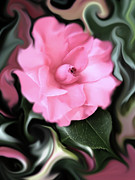 Camellia Photo Metal Prints - Fantasy Camellia Flower Metal Print by Jennie Marie Schell