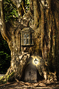Miniature Effect Photos - Fantasy fairytale miniature house in tree in forest by Matthew Gibson