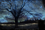 Surreal Fantasy Trees Landscape Prints - Fantasy Infrared Nature Photography - Blue Starry Surreal Gothic Fantasy Trees and Stars Print by Kathy Fornal