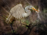 Egret Digital Art Posters - Fantasy  Poster by Joseph G Holland