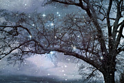 Fantasy Tree Art Print Art - Fantasy Nature Blue Starry Surreal Gothic Fantasy Blue Trees Nature Starry Night by Kathy Fornal
