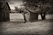 Farm Building Prints - Farm - Barn -Chicken Coup - black and white Print by Paul Ward