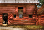 Reds Framed Prints - Farm - Barn - Visiting the Farm Framed Print by Mike Savad