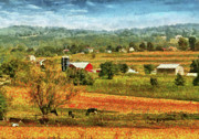 Farming Barns Photo Prints - Farm - Cow - Cows Grazing Print by Mike Savad