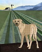 Farm Dog Print by Janet Carlson
