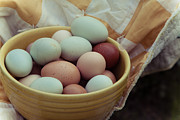 Quilt Art Photos - Farm Eggs with vintage bowl and quilt by Toni Hopper