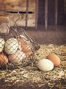 Wooden Bowl Photos - Farm Fresh Eggs by Edward Fielding
