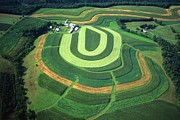 Farm Greens And Hillside Contour Plowing Print by Blair Seitz