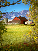 Marilyn Hunt - Farm in Boulder Colorado