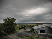 All - Farm Land Goshen NY by John and Lisa Strazza