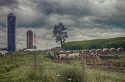 Farm Landscape Print by Kathy Jennings