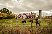 Karen Zucal Varnas - Farm Living