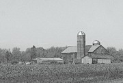 Corn Drawings Prints - Farm Of Newaygo County Michigan Print by Rosemarie E Seppala