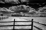 Raymond Salani III - Farm