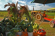 Farmstand Metal Prints - Farm Stand Harvest Metal Print by Alida Thorpe
