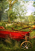 Fencing Photo Framed Prints - Farm - Tool - A rusty old wagon Framed Print by Mike Savad